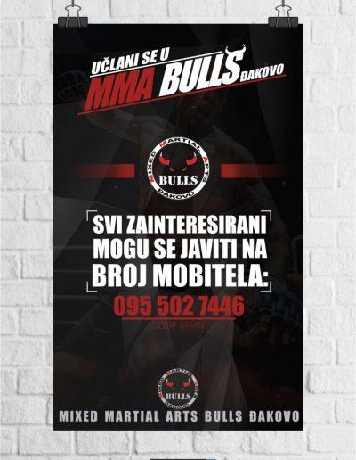 plakat_mma_bulls